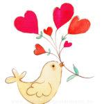for you - lovely bird