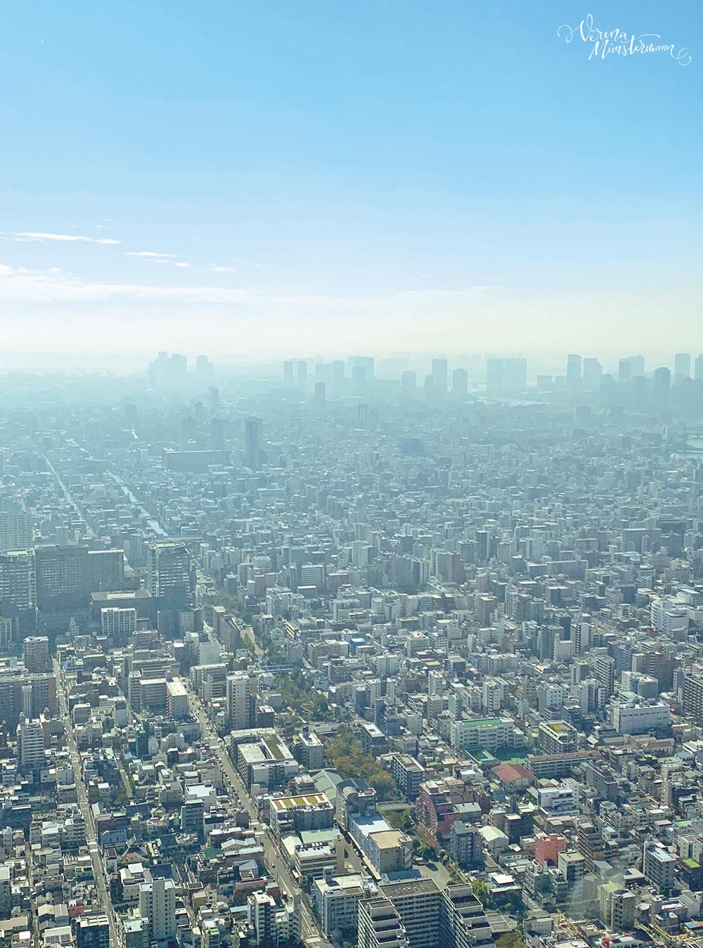 tokyo - skytree- nach-Japan-reisen - tokio - verenamuenstermann