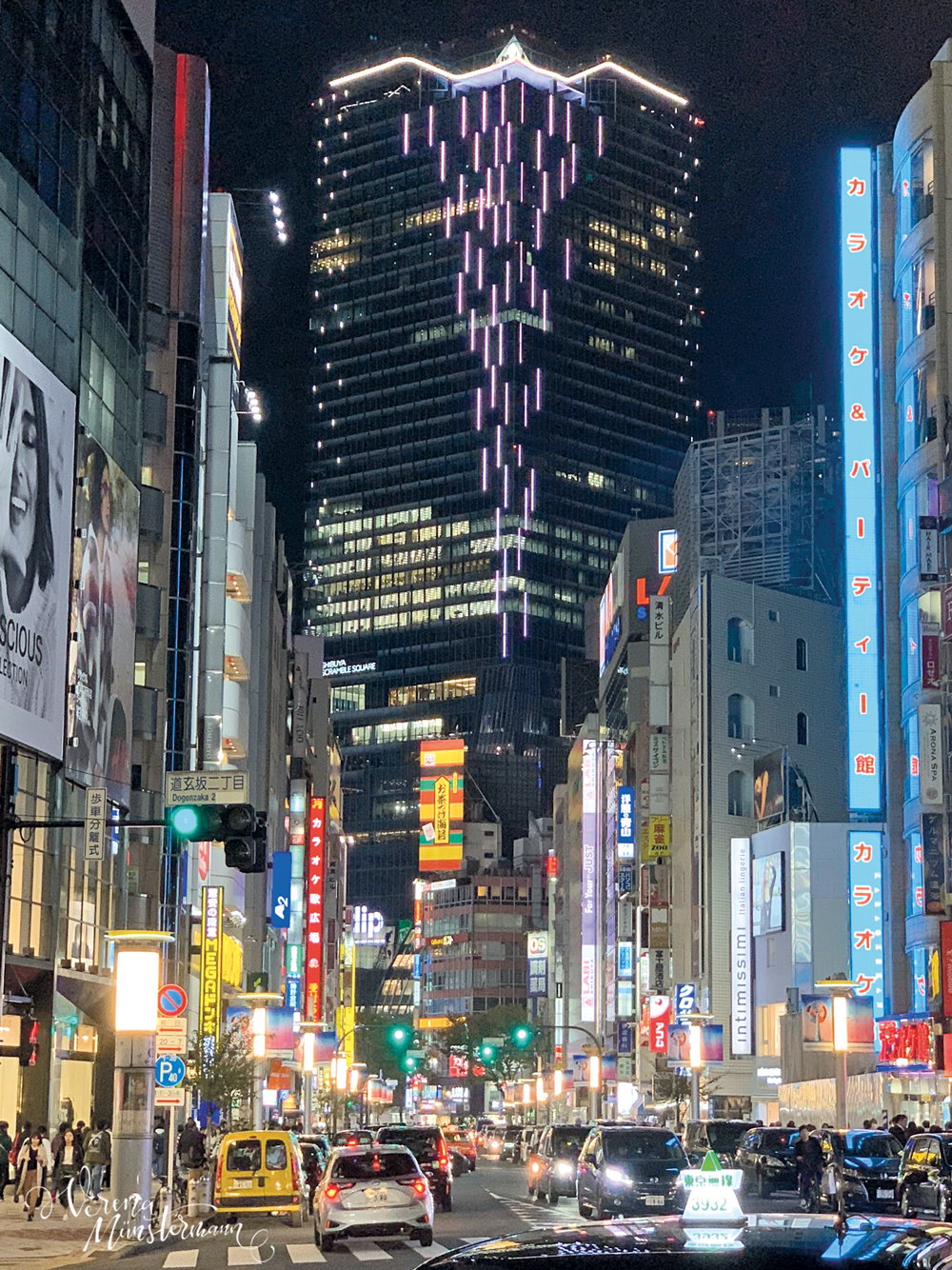 nach-Japan-reisen_tokio_verenamuenstermann