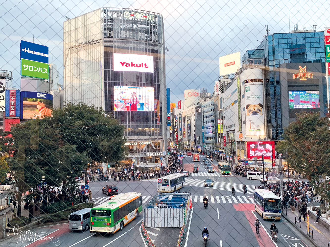 nach-Japan-reisen_tokio_laubfaerbung_shibuya_Crossing_verenamuenstermann