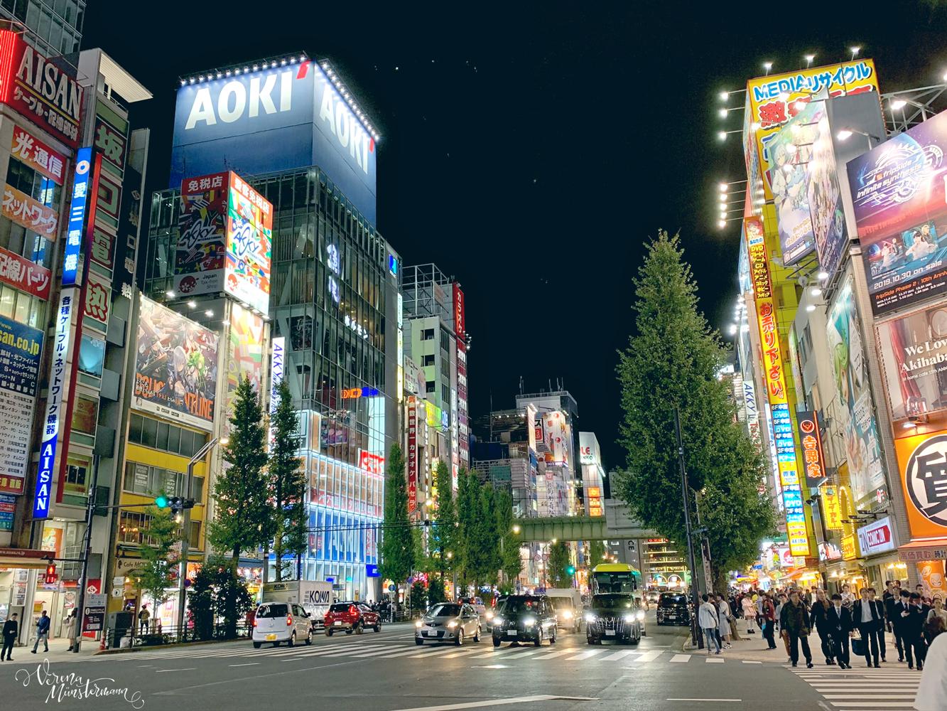 tokio - nach-Japan-reisen - akihabara - moreconfetti